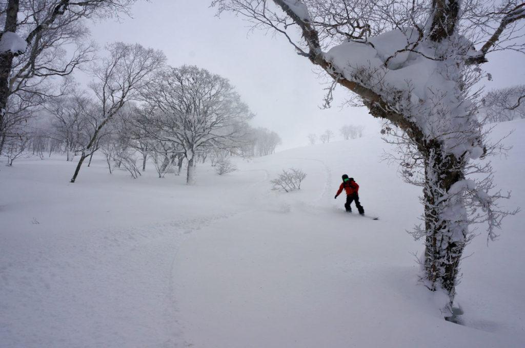 岐阜・大日ヶ岳バックカントリー